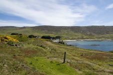Free Farming In The Falklands Royalty Free Stock Photography - 15086077