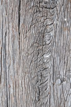 Free Texture On Old Wooden Royalty Free Stock Image - 15087086