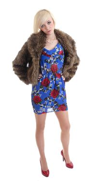 Free Pretty Blond Wearing Fur Coat Royalty Free Stock Photo - 15087595