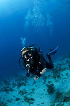 Female Scuba Diver Stock Photography