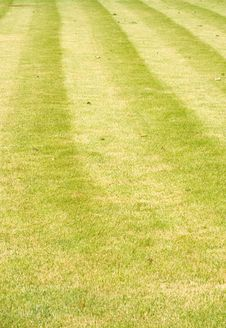 Free Lawn With Stripes. Royalty Free Stock Image - 15087966