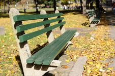 Boston Public Park Royalty Free Stock Image