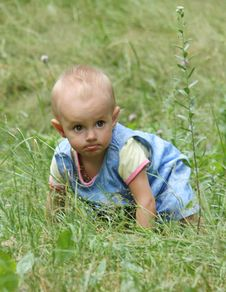 Free Little Girl Crawls In The Grass Royalty Free Stock Image - 15088936
