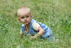 Free Little Girl Crawls In The Grass Stock Images - 15088944