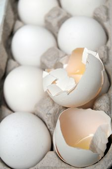Free Hatched Eggs Royalty Free Stock Photo - 15089625