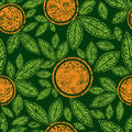Free Seamless Green Pattern With Cute Oranges Stock Photo - 15093710