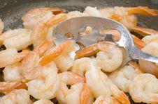 Free Shrimp Stock Photo - 15090230
