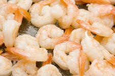 Free Shrimp Royalty Free Stock Image - 15090236