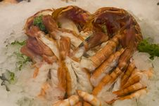 Fresh Shrimps Royalty Free Stock Photos