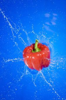 Free Pepper Royalty Free Stock Photography - 15090257