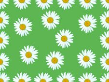 Free Flowers On Green Background. Stock Images - 15093844