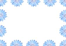 Free Frame Of Flowers. Royalty Free Stock Image - 15093866