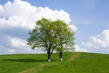 Free Spring Landscape, Russia Stock Photography - 15096362