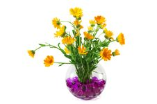 Free Marigold Flowers In A Vase Royalty Free Stock Image - 15097116