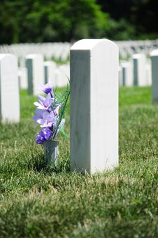 Flowers At Arlington Cemetery Royalty Free Stock Images
