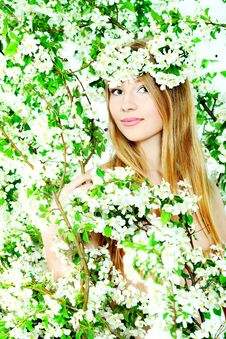 Free Blonde In Flowers Stock Photos - 15098713