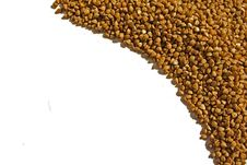 Free Buckwheat Stock Images - 15099774