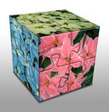 Free Cube With Poinsettia Stock Images - 1510094