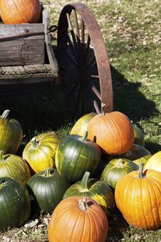 Free Pumpkins By A Wagon Stock Images - 1510064