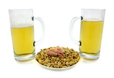 Free Beer Stock Images - 1512834