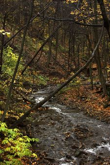 Bridge And Stream In Autumn Stock Photography