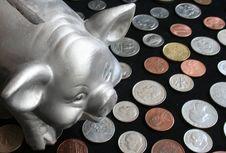 Free Piggy Bank Stock Photography - 1513672