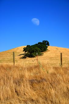 Moon And Field Royalty Free Stock Photography