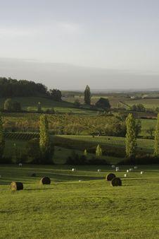 Free Hayrolls, Daybreak Stock Image - 1516891