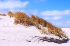 Free Sand Dunes Stock Photography - 1518252