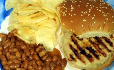 Free Turkey Burger, Chips & Beans Royalty Free Stock Photography - 1518457