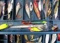 Free Set Of Fishing Equipment Stock Photo - 15100200