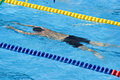 Free Swimming Competition Royalty Free Stock Photography - 15102857