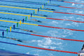 Free Swimming Competition Stock Photos - 15102913