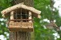 Free Nesting Box Royalty Free Stock Photos - 15103768