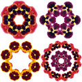 Free Pansy Flower Mandalas Stock Photography - 15108052