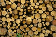 Free Firewood Stack Background Stock Image - 15100311