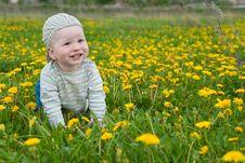 Free Beautiful Little Boy Looks In Green  Meadow Royalty Free Stock Image - 15100816