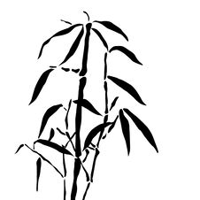 Free Bamboo Branches Royalty Free Stock Image - 15102026
