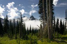 Free Mount Rainier Stock Image - 15102321