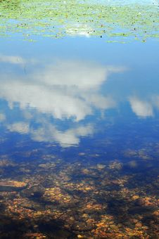 Free Sky Reflection In Pond Stock Photo - 15102850