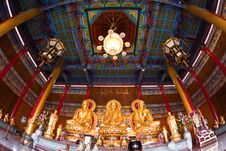 Three Golden Buddha Royalty Free Stock Images