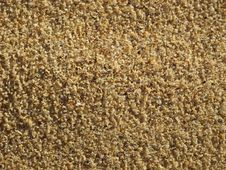 Free Beach Sand Royalty Free Stock Photo - 15104155