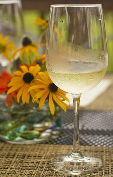 Free Glass Of Chilled White Wine Stock Photos - 15104313