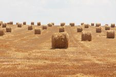 Free Wide Open Stubble Field With Straw Stock Image - 15105971