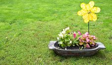 Free Flowers In A Pot Stock Images - 15108864