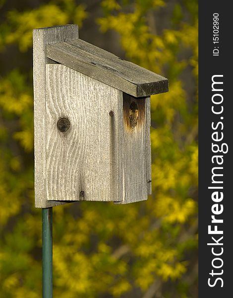 Birdhouse Bird House Wooden Wood