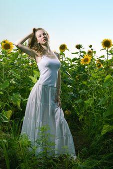 Free Beauty Woman In Sunflower Stock Photo - 15111650
