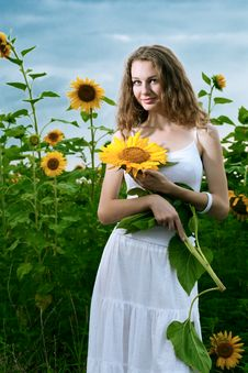 Free Beauty Woman In Sunflower Stock Photography - 15111692