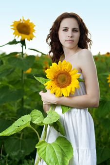 Free Beauty Woman In Sunflower Stock Photo - 15111780