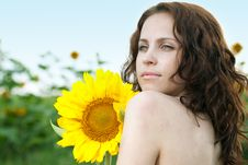 Free Beauty Woman In Sunflower Royalty Free Stock Images - 15111829
